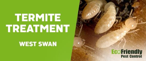 Termite Control West Swan