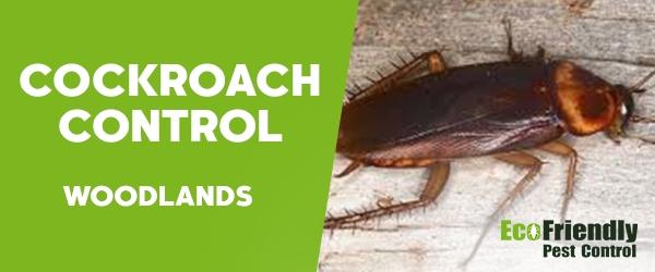 Cockroach Control Woodlands