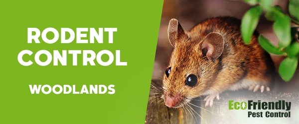 Rodent Treatment Woodlands