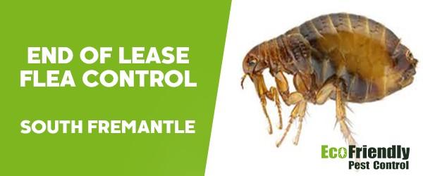 End of Lease Flea Control  South Fremantle