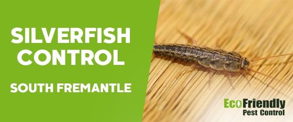 Silverfish Control  South Fremantle