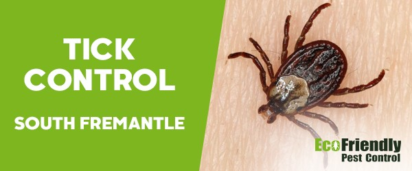Ticks Control  South Fremantle