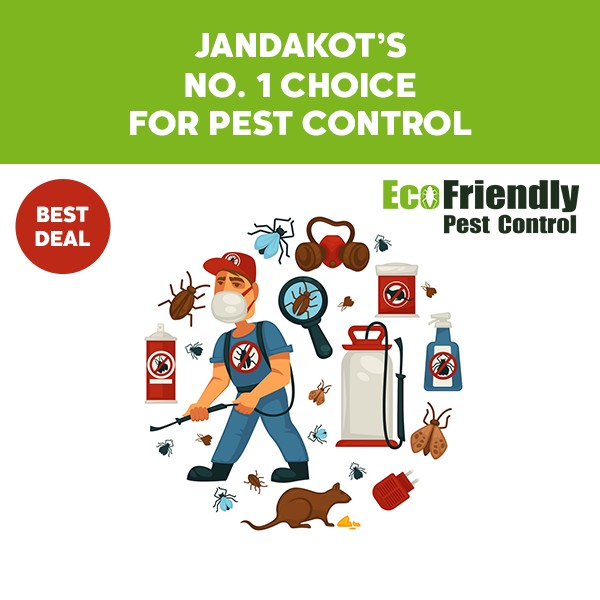 Pest Control Jandakot