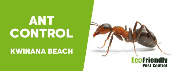 Ant Control Kwinana Beach