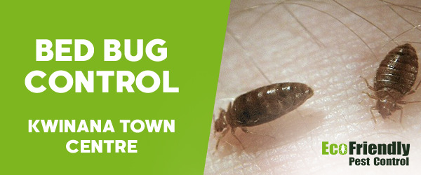 Bed Bug Control Kwinana Town Centre
