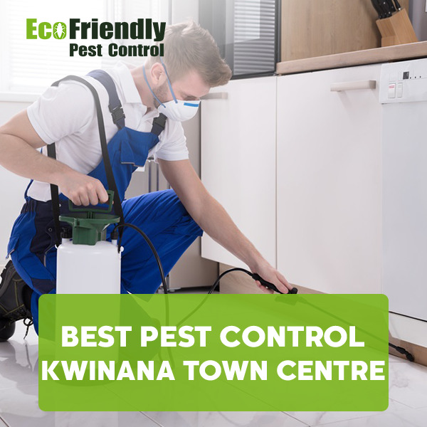 Best Pest Control Kwinana Town Centre