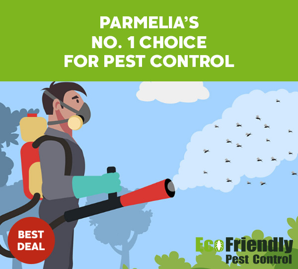 Pest Control Parmelia