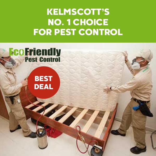 Pest Control Kelmscott